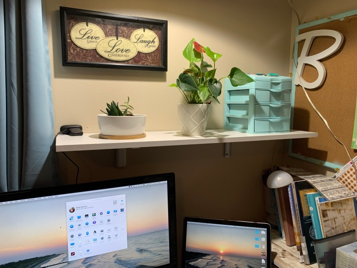 photo of a shelf over a desk. The desk has a laptop connected to second monitor. The shelf holds two plants and a small storage box.